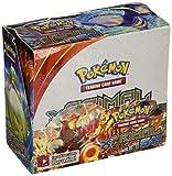 Pokemon Primal Clash Booster Box 36 Sealed Packs