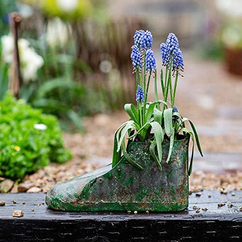 Rishx Bottes européenne Lapin Succulentes Pot de Fleurs de Jardin en métal Décoration Conteneur for Bureau Bureau Décoration (Taille : S)