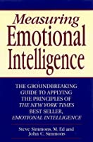 Measuring Emotional Intelligence: The Groundbreaking Guide to Applying the Principles of Emotional Intelligence