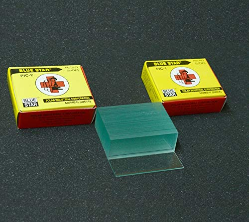 Aggstrom 50 Pre-Cleaned Blank Glass Microscope Slides and 40pc Pre-Cleaned Square Glass Cover Slips Coverslips