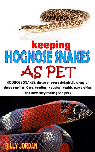 Keeping Hognose Snakes As Pet Hognose Snakes Discover Every Detailed Biology Of These Reptiles Care Feeding Housing Health Ownerships And How They Make Good Pets Kindle Edition By Jordan Billy Crafts