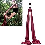 F.Life Aerial Silks Standard Kit Pilates Yoga Flying Swing Aerial Yoga Hammock Silk Fabric for Yoga (10 Yards of Fabric) (Burgundy)