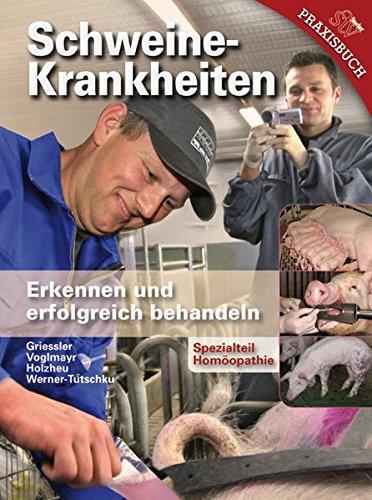 Schweinekrankheiten: Erkennen und erfolgreich behandeln