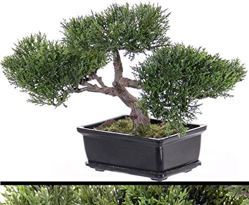kunstpflanzen-discount.com Bonsai Ceder, ca.113 Blätter mit Schale, ca 23cm - Künstliche Bonsai Pflanze