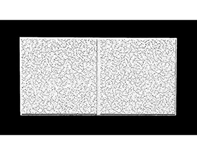 """Armstrong Acoustical Ceiling Tile, 24"""" Width, 48"""" Length, 3/4"""" Thickness, Mineral Fiber - 2767D"""