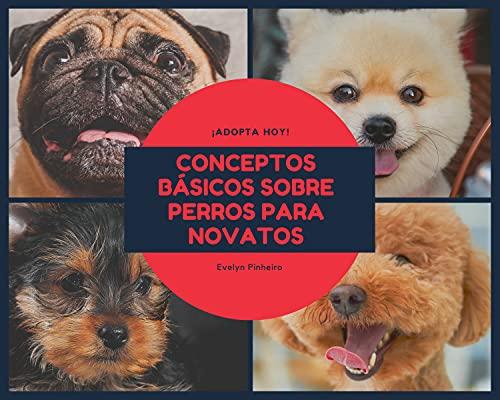 Conceptos básicos sobre perros para principiantes (Spanish Edition)