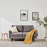 SETORE loveseat Small Couch and Sofa for Living Room Bedroom/Easy, Tool-Free Assembly- 54.3' Light Gray