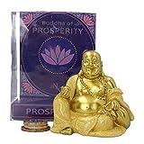 Weird Or Wonderful Spardose Nemesis Nemesis Now Ostreligion Glücksbringer Feng Shui Pudai Ho-Tei Buddismus Koi Bonsai Chinesische Ornament Statue Gold Orientalisches göttliches Geschenk
