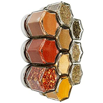 PANTRY BASICS | Ten Organic Starter Spices in Gneiss Spice Small Magnetic Jars for Fridge | Graduation Gift Kit  10 Jars Silver Lids
