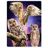 YISUMEI Tapissery 125x150 cm Kuscheldecken Sanft Flanell Weich Fleecedecke Bettüberwurf Eule Owl lila