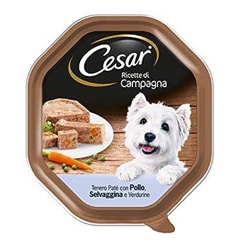 Cesar Recettes de Campagne Nourriture pour Chien avec Sauvage, Poulet et légumes 150 g – 14 bacs