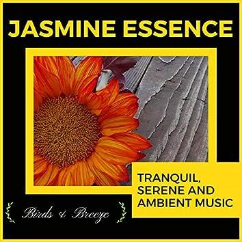 Jasmine Essence - Tranquil, Serene And Ambient Music