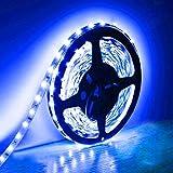 EKSAVE - Tira de luces LED de 5 m, 300 unidades, SMD 5630, 12 V, baja tensión, no impermeable, IP20, iluminación LED para...