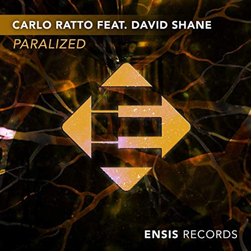 Carlo Ratto & David Shane