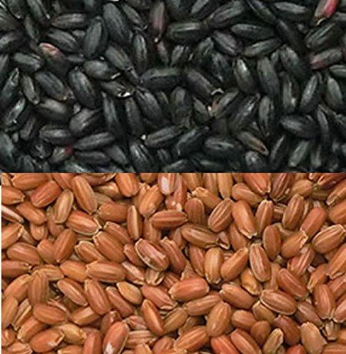 古代米 黒米 と 赤米 各500g