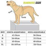 Aodoor Ultra-Soft Hundegeschirr Softgeschirr Brustgeschirr Hunde Geschirr Sicherheitsgeschirr M Grün - 3