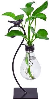 Desktop Glass Planter Hydroponics Vase, GAIATOP Desk Plant Modern Creative Bird Planter Bulb Vase with Holder for Home Off...