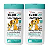 Petkin Plaque Toothwipes, Fresh Mint, 40...