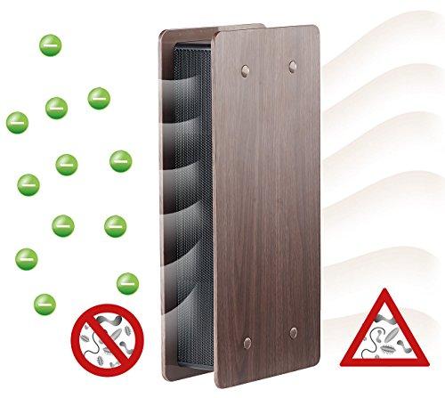 newgen medicals Luftverbesserer: Luftreiniger mit Ionisator und zuschaltbarem Lüfter, dunkle Holz-Optik (Ionisationsgeräte Luftreiniger)