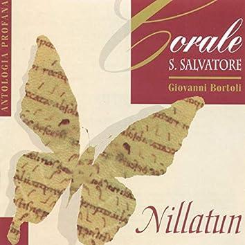 Nillatun, Antologia profana - Canzoni dal mondo