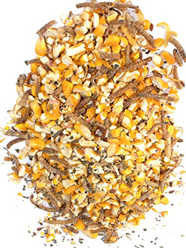 Pampered Chicken Mama Non-GMO Mealworm, Corn, Flax, & Herb Treat for Backyard Chickens, Healthy Layer Feed & Supplies for Pet Chickens Poultry Queen Treat for Hens (10 pounds)