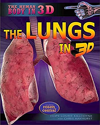 The Lungs in 3D