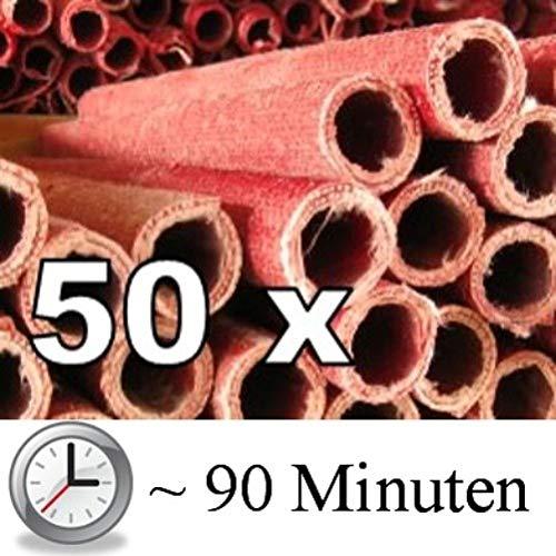Ströbel 50x Wachsfackel Fackel Gartenfackel - Brenndauer je nach Länge (55 cm - ca. 90 Minuten Brenndauer)