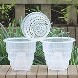 meshpot transparente plástico–Maceta para orquídeas con agujeros–3piezas (2piezas 18cm + 1piezas, 14cm), 2 Pièces 18 cm + 1 Pièce 14 cm