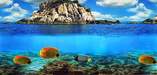 Pistachio Pet poster per sfondo dell'acquario, fronte-retro, 45 x 100 cm