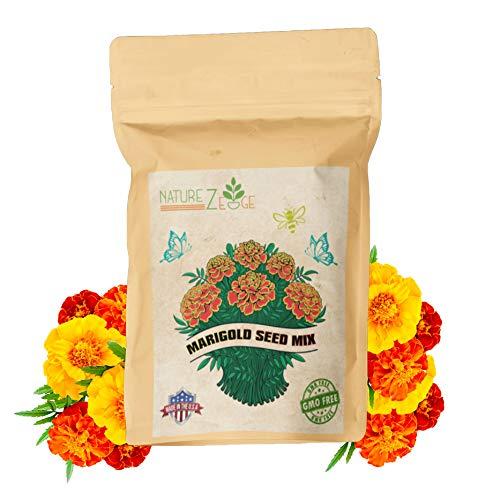 NatureZ Edge Marigold Seeds Mix
