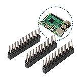 40 Pin Headers Doble Fila,3 Piezas 2.54mm Conector Hembra De Cabecera,Adecuado Para Raspberry Pi, Placa Pcb Bien,Se Utilizan En La Computadora y El Tablero