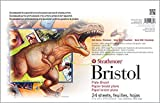 Strathmore (580-52 500 Series Sequential Art Bristol, 2-Ply Plate Surface, 24 Sheets