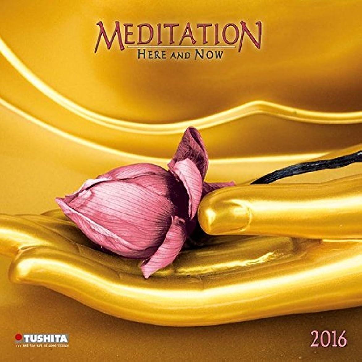 理容師明確な半径Meditation Here & Now 2016 (Mindful Editions)