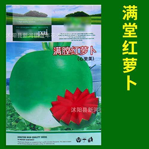 Aerlan Samen saatgut winterhart mehrjährig,Gemüsesamen Erdbeer Gurke Wassermelone Pfeffer Salat Petersilie-J,Bunte Blumen