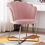 Duhome Velvet Accent Chair Vanity Chair Makeup Chair Guest Chair Tufted Desk Chair Living Room Chair with Golden Metal Legs Salmon Pink