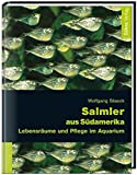*Salmler aus Südamerika: Lebensräume und Pflege im Aquarium