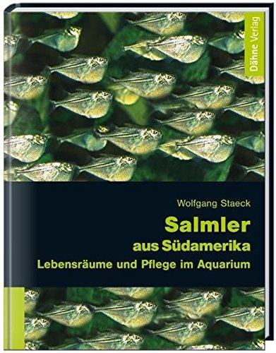 Salmler aus Südamerika: Lebensräume und Pflege im Aquarium