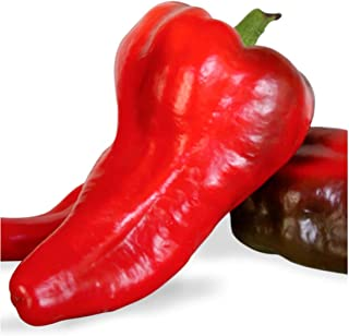 Italian Marconi Red Pepper Seeds (Non-GMO) UPC 600188192407 + 1 Plant Marker - Great in Salads, stir Fries, Fajitas & Italian sauces (500)