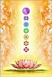 Poster 40 x 60 cm: Sacred Lotus von Dirk Czarnota -