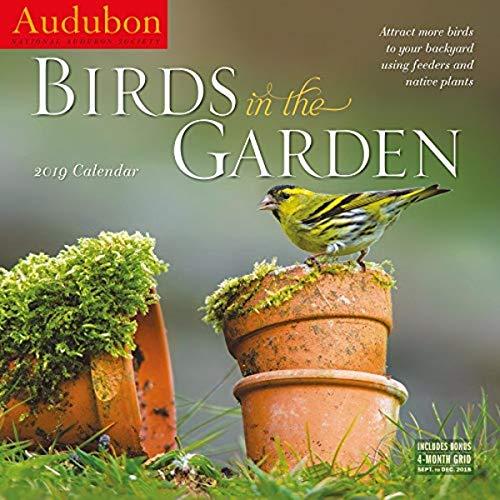 Audubon Birds in The Garden Wall Calendar 2019