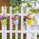 Zoom IMG-1 aiffera vaso da fiori appendere