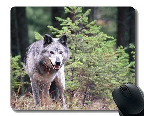 Gaming Mouse Mat,Animal Wolf Wild Mousepad Nonslip Rubber Backing