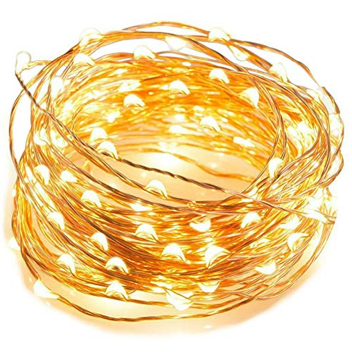 Lsooyys 5m Photo Clip String Light Warm Color Fairy Tale Lamp, LED Outdoor Garland with Corolla, Used for Home or Holiday Decoration String Light