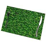 Cool-Show, set di 6 tovagliette stampate da parete con foglie verdi, lavabili per tavolo da pranzo, per cucina, sala da pranzo, decorazione per la casa, 30,5 x 45,5 cm