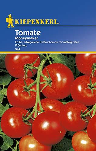 Kiepenkerl 394 Tomate Moneymaker (Tomatensamen)