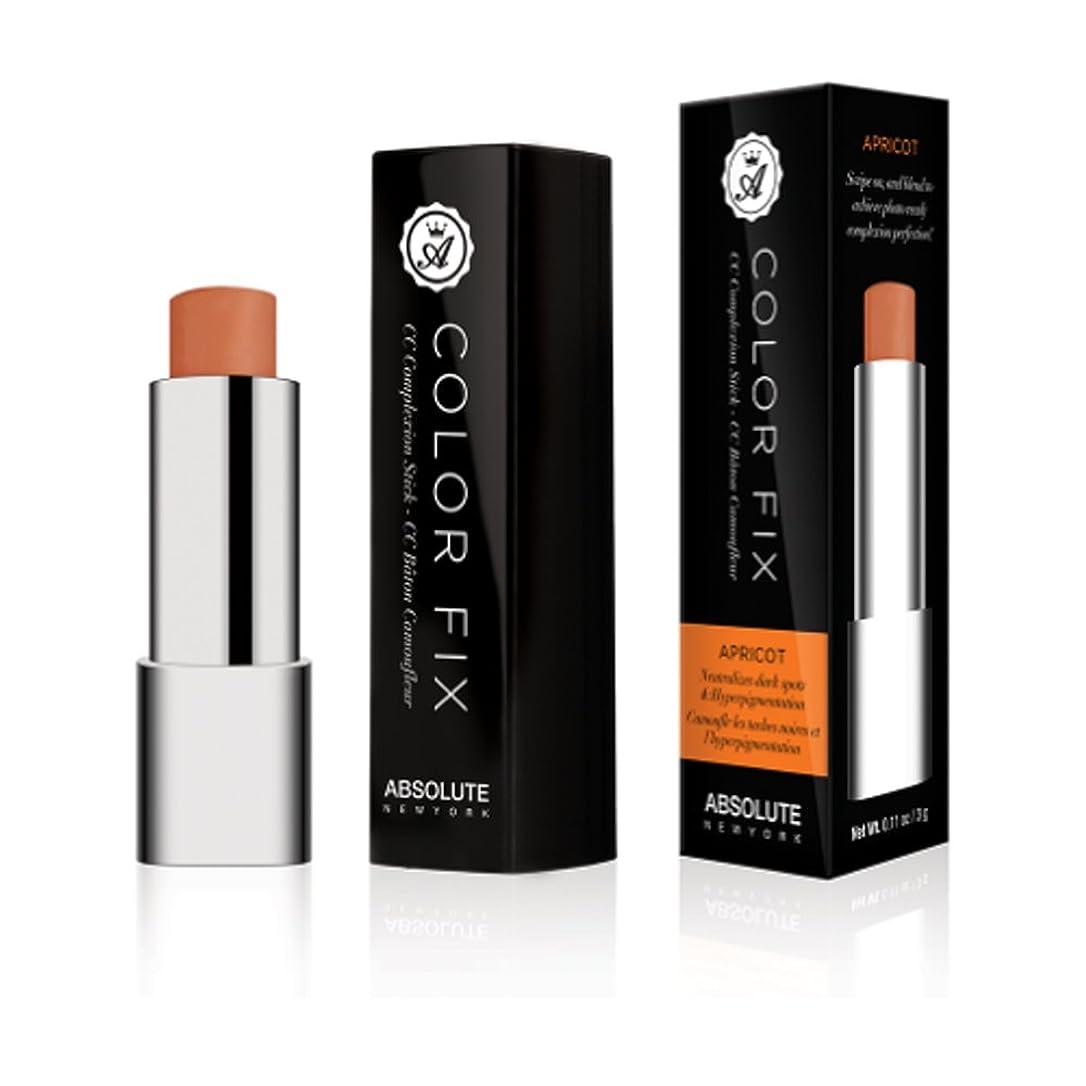 怖い十代の若者たち有料(6 Pack) ABSOLUTE Color Fix Complexion Stick - Apricot (並行輸入品)