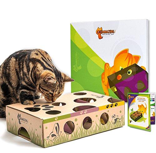 CAT AMAZING – Mejor juguete para gatos jamás! Interactive Treat Maze & Puzzle Feeder para gatos ✅