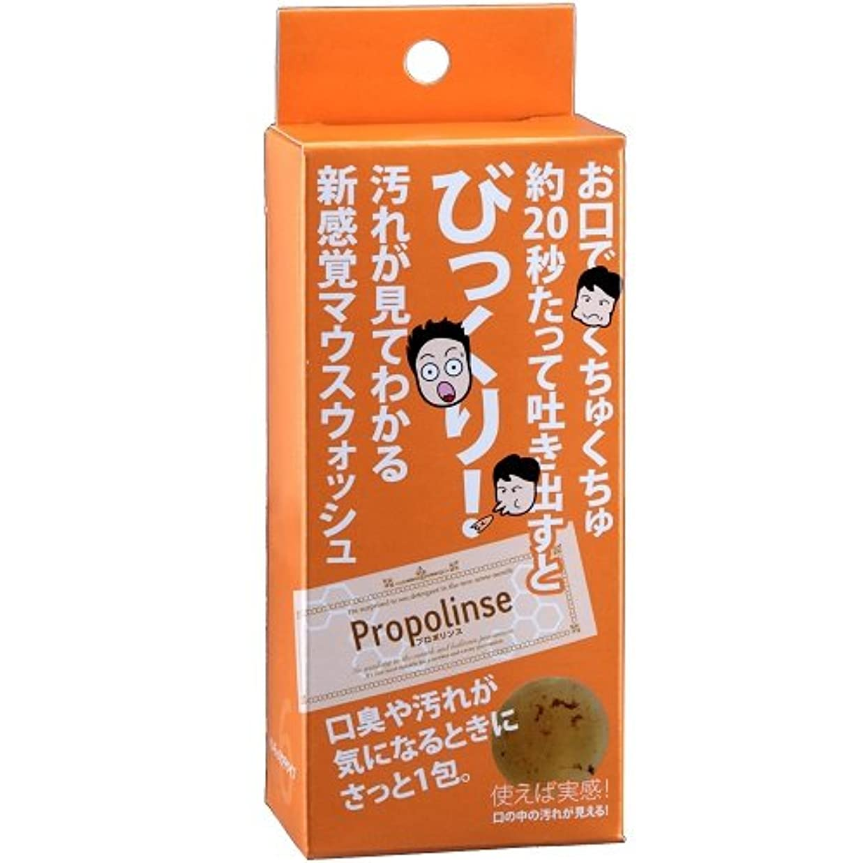 味リッチ細部プロポリンス ハンディーパウチ(6包) 10個セット