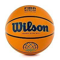 Wilson Basketball, EVO