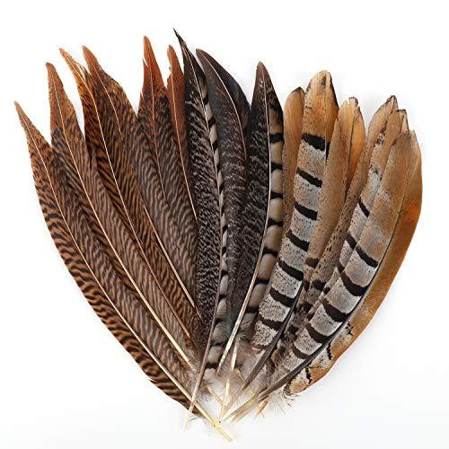 MWOOT plumas de cola de faisán naturales 15pcs 20-30cm decoración para manualidades, boda, fiestas de cumpleaños